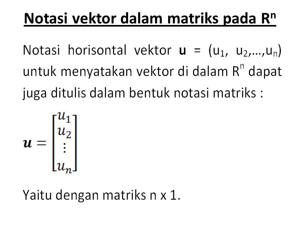 Notasi vektor dalam matriks pada Rn