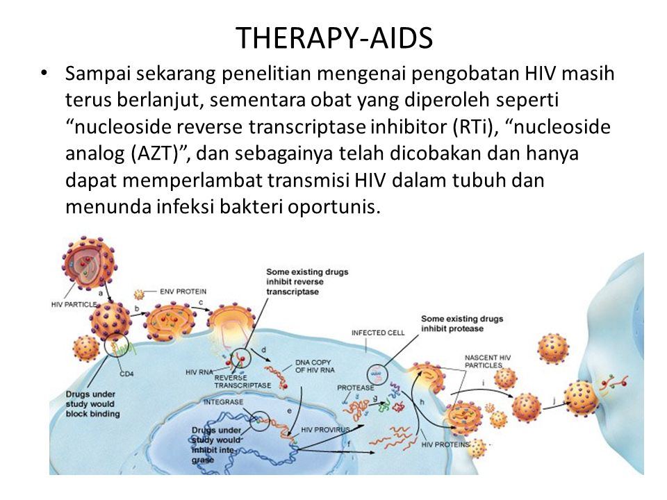 THERAPY-AIDS
