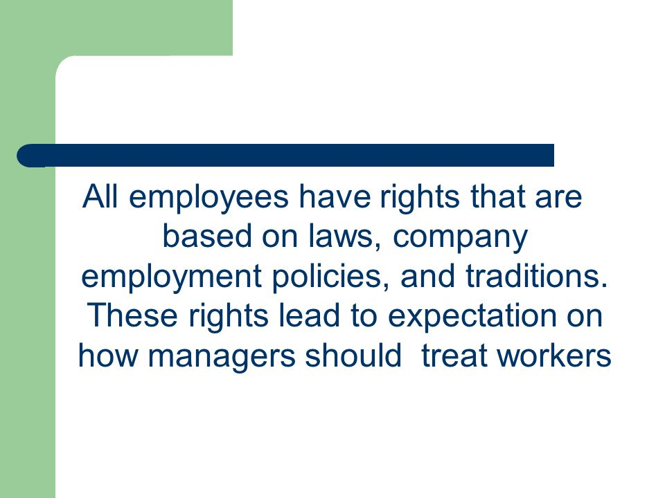 All employees have rights that are based on laws, company employment policies, and traditions.