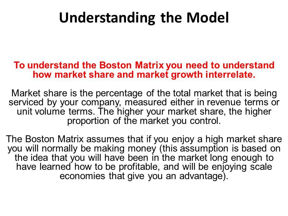 Understanding the Model