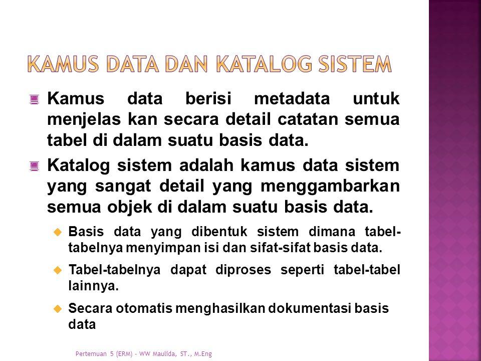 Kamus data dan katalog sistem