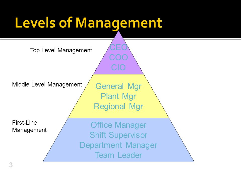 Levels of Management CEO COO CIO General Mgr Plant Mgr Regional Mgr