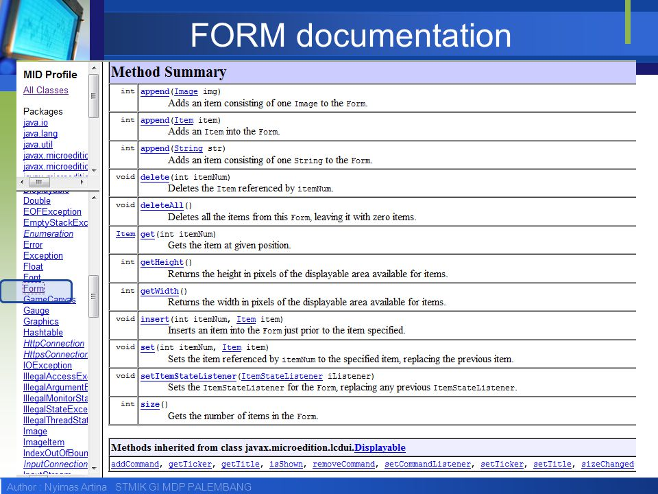 FORM documentation