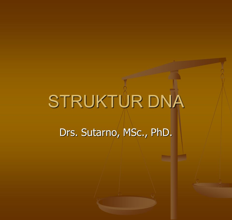 STRUKTUR DNA Drs. Sutarno, MSc., PhD.