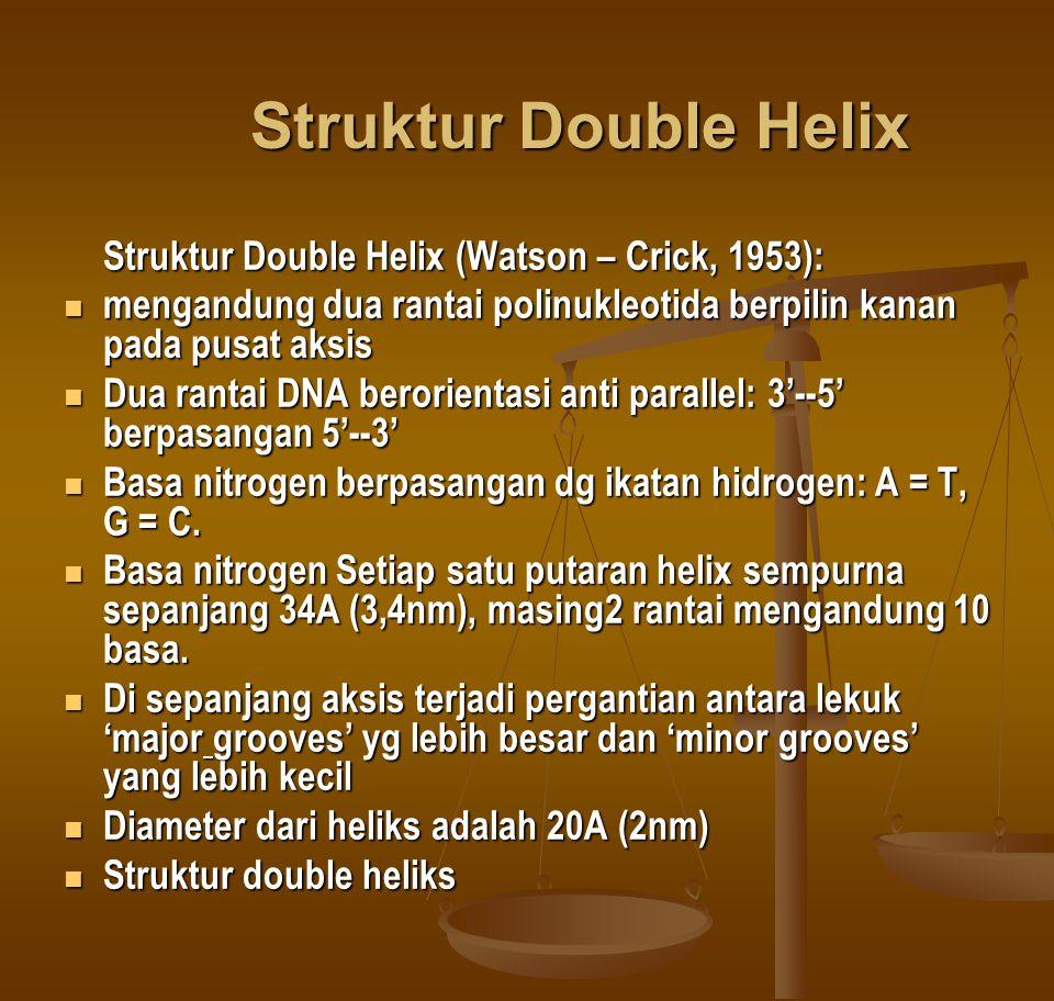 Struktur Double Helix Struktur Double Helix (Watson – Crick, 1953):