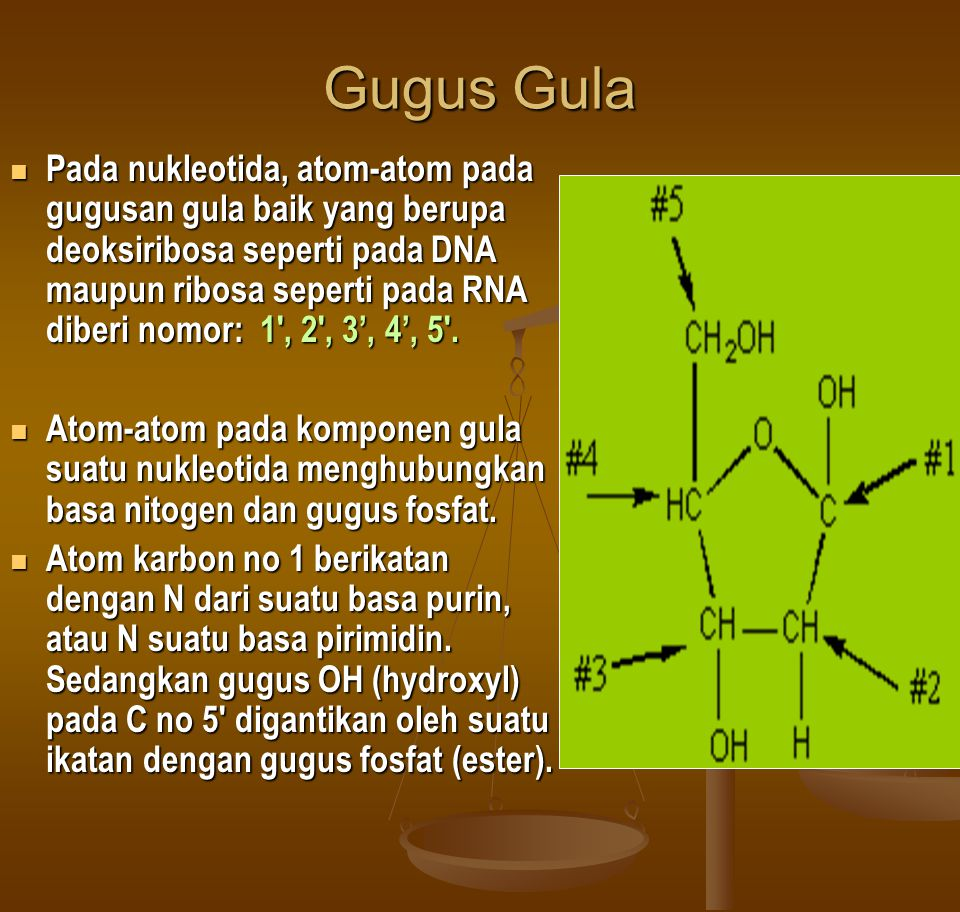 Gugus Gula