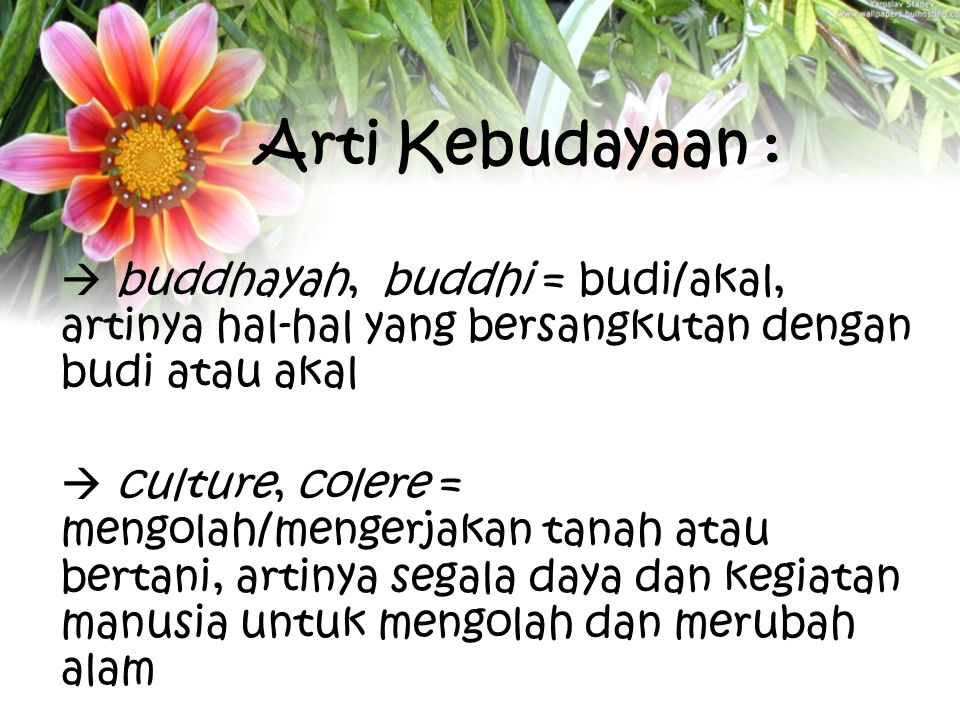 Arti Kebudayaan :  buddhayah, buddhi = budi/akal, artinya hal-hal yang bersangkutan dengan budi atau akal.