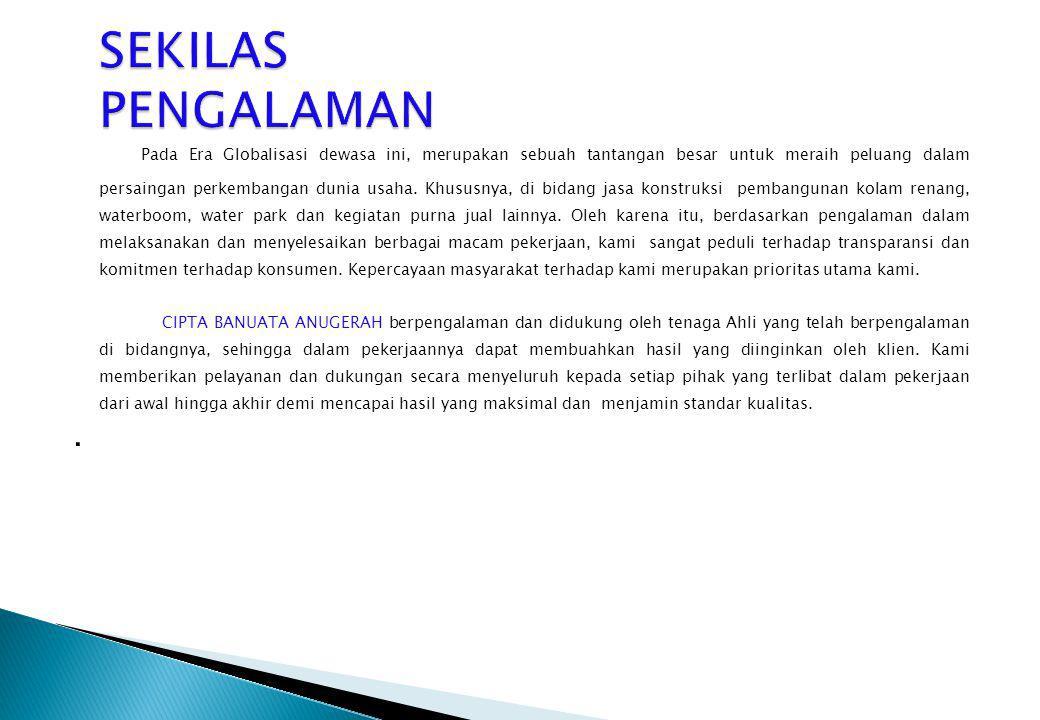 Company Profile 2009 SEKILAS PENGALAMAN.