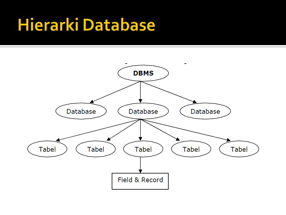 Hierarki Database