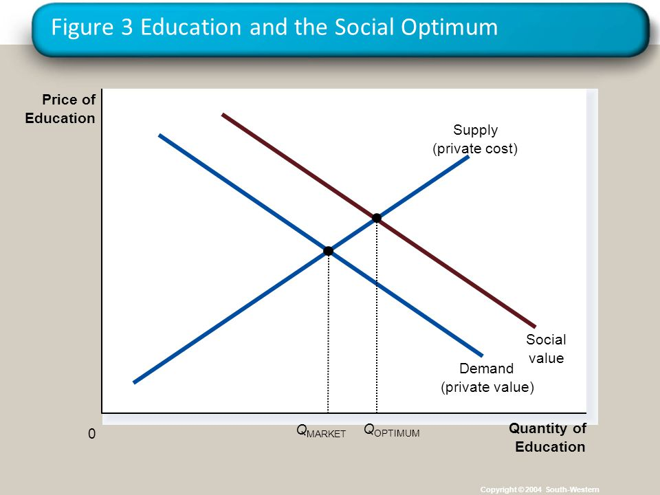 Figure 3 Education and the Social Optimum