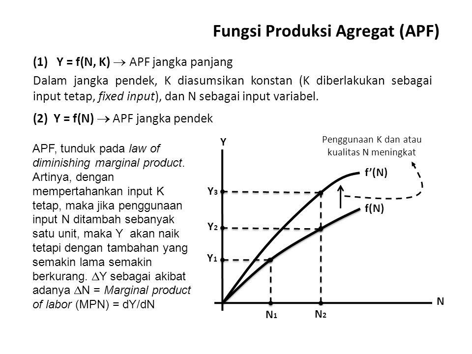 Fungsi Produksi Agregat (APF)