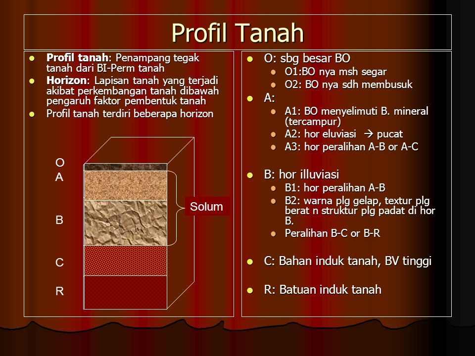 Profil Tanah O: sbg besar BO A: B: hor illuviasi