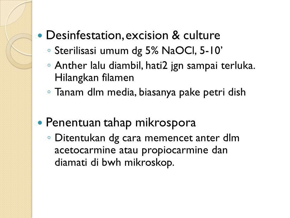 Desinfestation, excision & culture