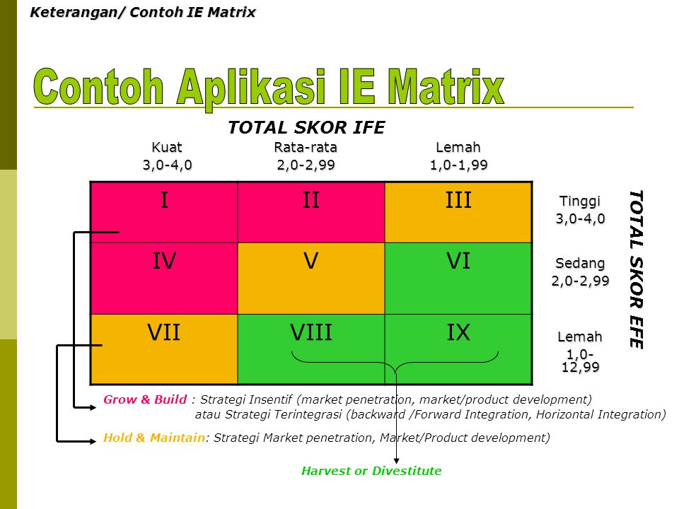 Contoh Aplikasi IE Matrix