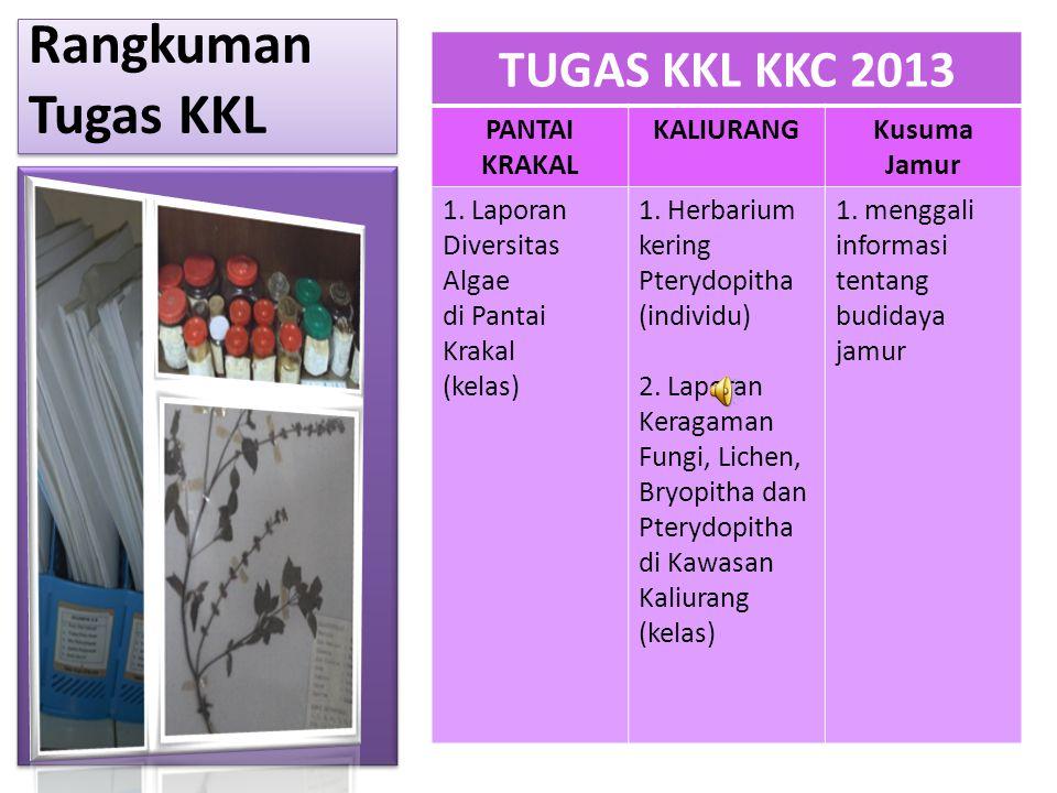 Rangkuman Tugas KKL TUGAS KKL KKC 2013 PANTAI KRAKAL KALIURANG