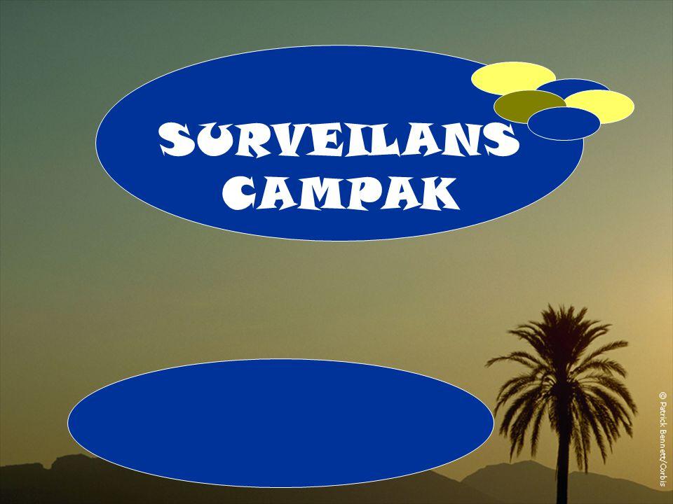 A 1 SURVEILANS CAMPAK 1