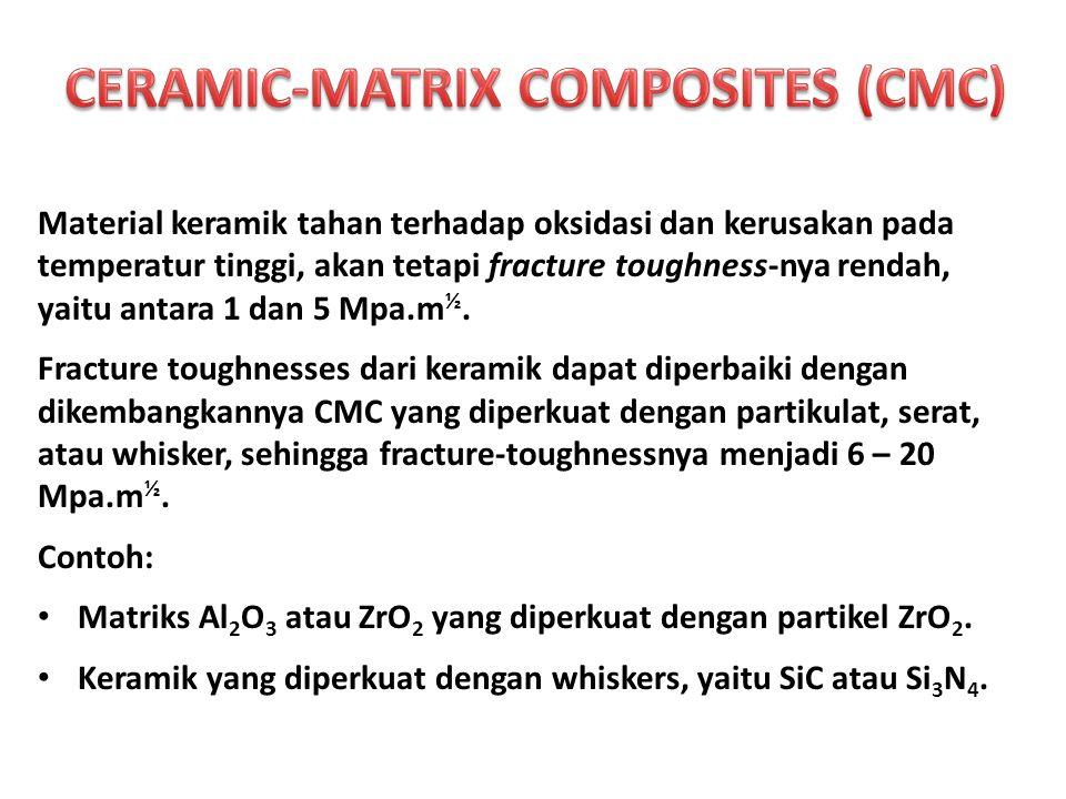 CERAMIC-MATRIX COMPOSITES (CMC)