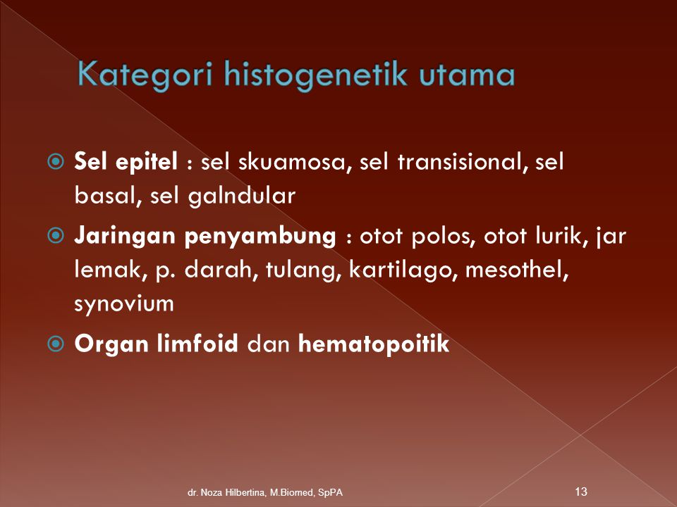 Kategori histogenetik utama