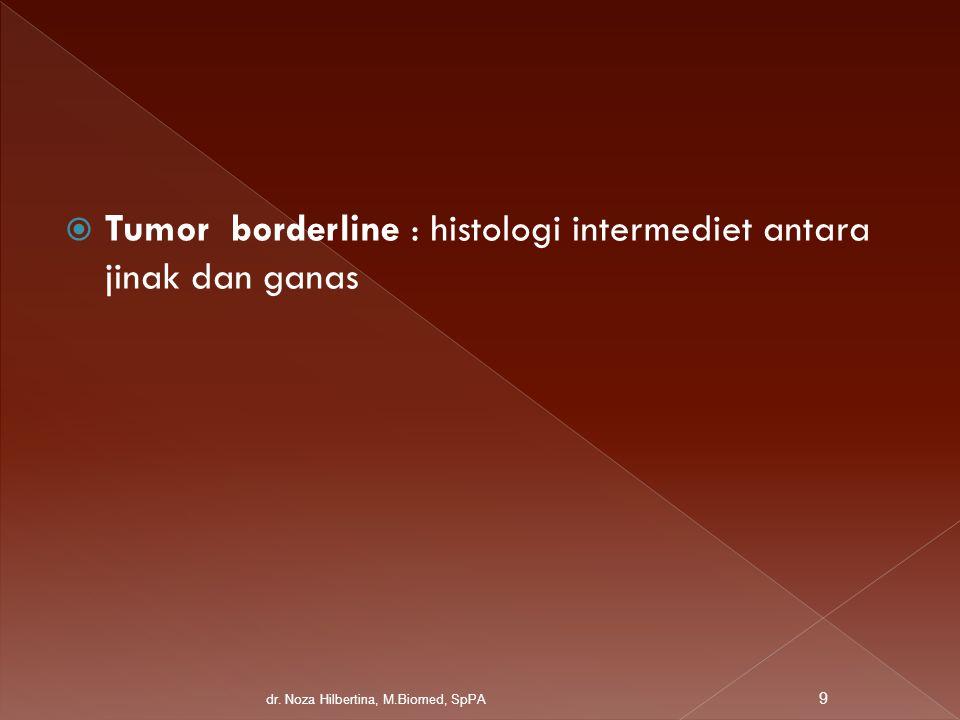 Tumor borderline : histologi intermediet antara jinak dan ganas