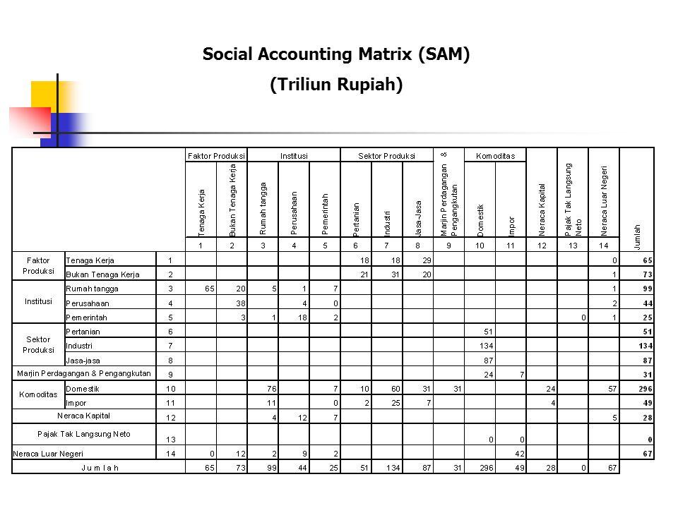 Social Accounting Matrix (SAM)