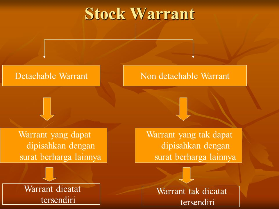 Stock Warrant Detachable Warrant Non detachable Warrant