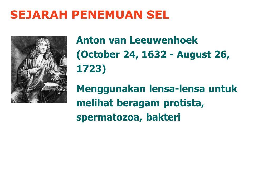 SEJARAH PENEMUAN SEL Anton van Leeuwenhoek (October 24, 1632 - August 26, 1723)