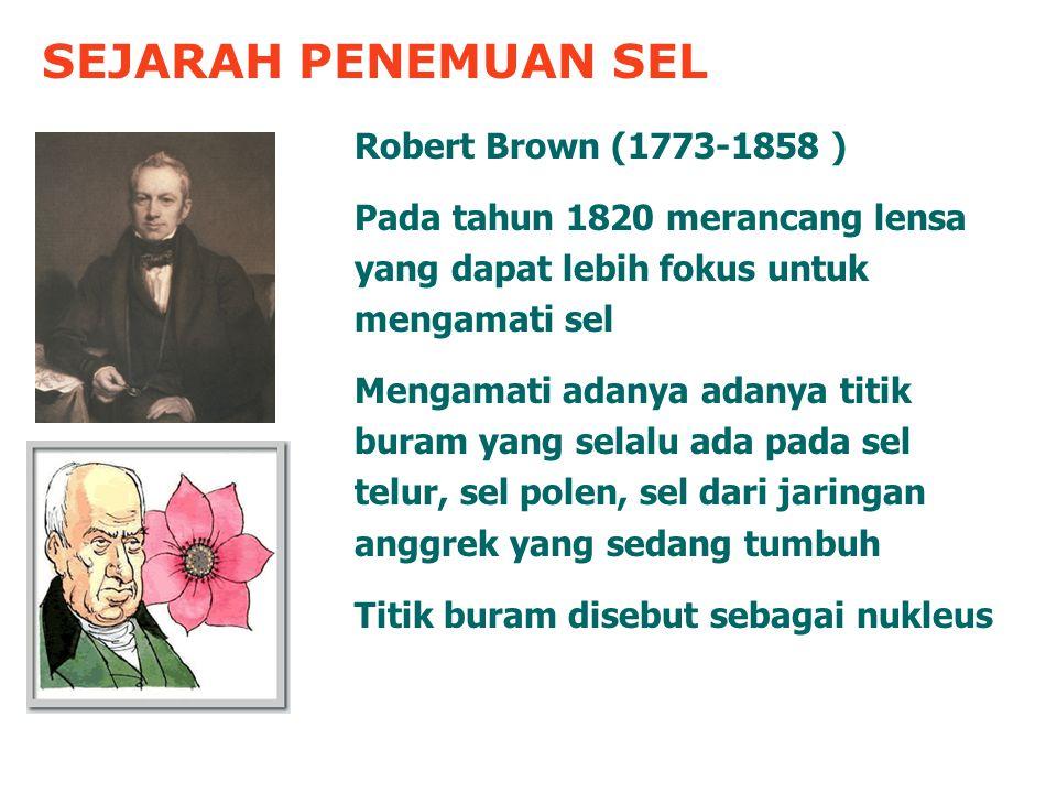 SEJARAH PENEMUAN SEL Robert Brown (1773-1858 )