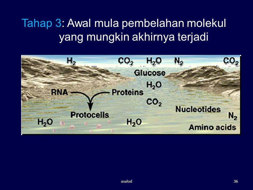 Tahap 3: Awal mula pembelahan molekul yang mungkin akhirnya terjadi