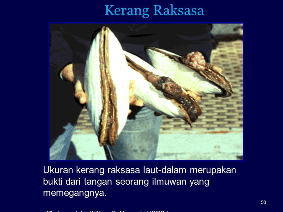 Kerang Raksasa Ukuran kerang raksasa laut-dalam merupakan bukti dari tangan seorang ilmuwan yang memegangnya.