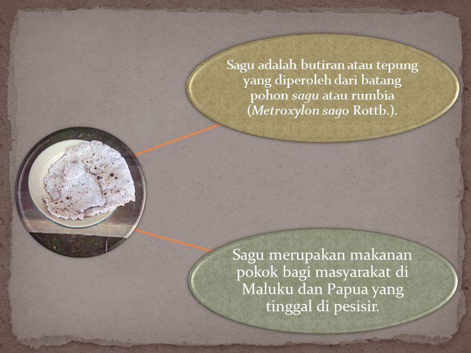 Sagu adalah butiran atau tepung yang diperoleh dari batang pohon sagu atau rumbia (Metroxylon sago Rottb.).