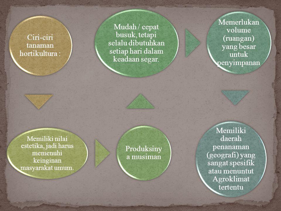 Ciri-ciri tanaman hortikultura : Produksinya musiman