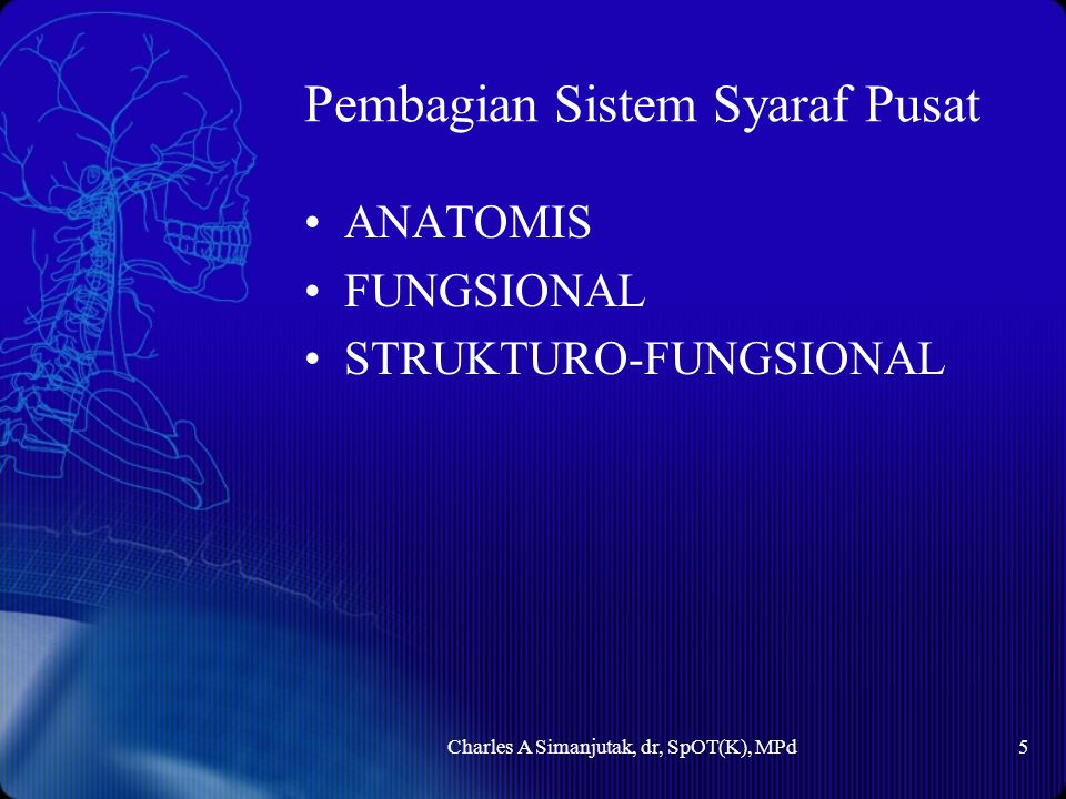 Pembagian Sistem Syaraf Pusat