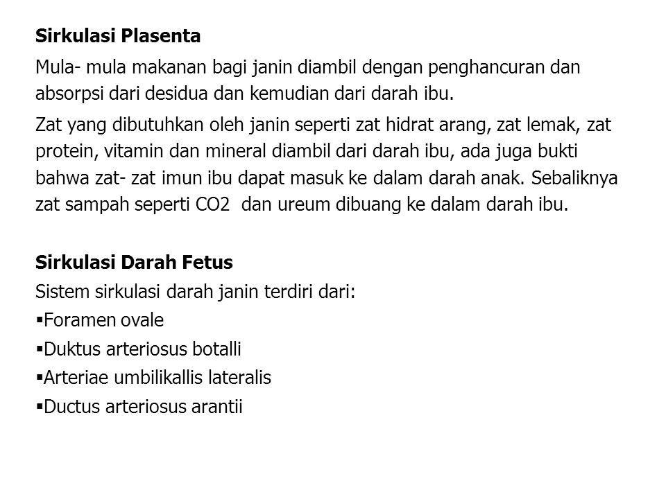 Sirkulasi Plasenta Mula- mula makanan bagi janin diambil dengan penghancuran dan absorpsi dari desidua dan kemudian dari darah ibu.