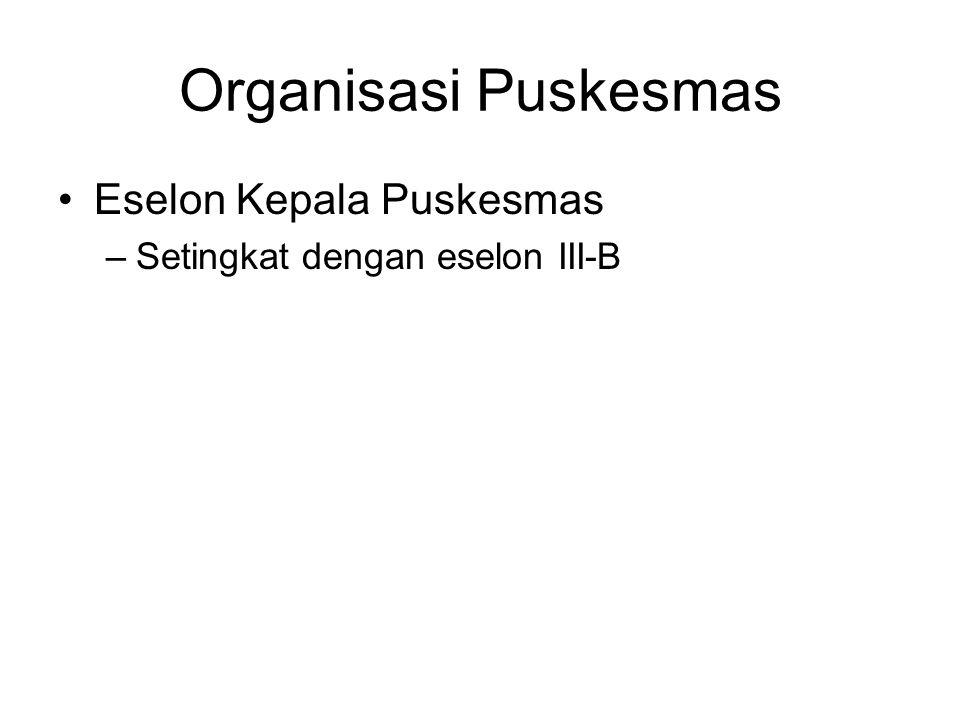 Organisasi Puskesmas Eselon Kepala Puskesmas