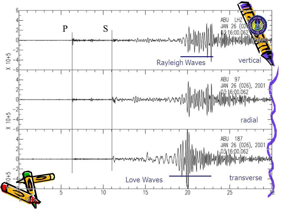 Love Waves vertical radial transverse Rayleigh Waves P S
