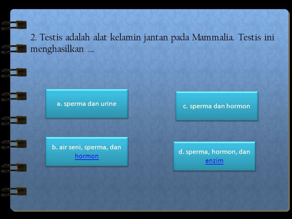 2. Testis adalah alat kelamin jantan pada Mammalia
