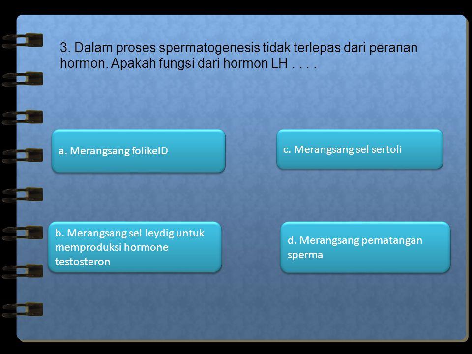 3. Dalam proses spermatogenesis tidak terlepas dari peranan hormon