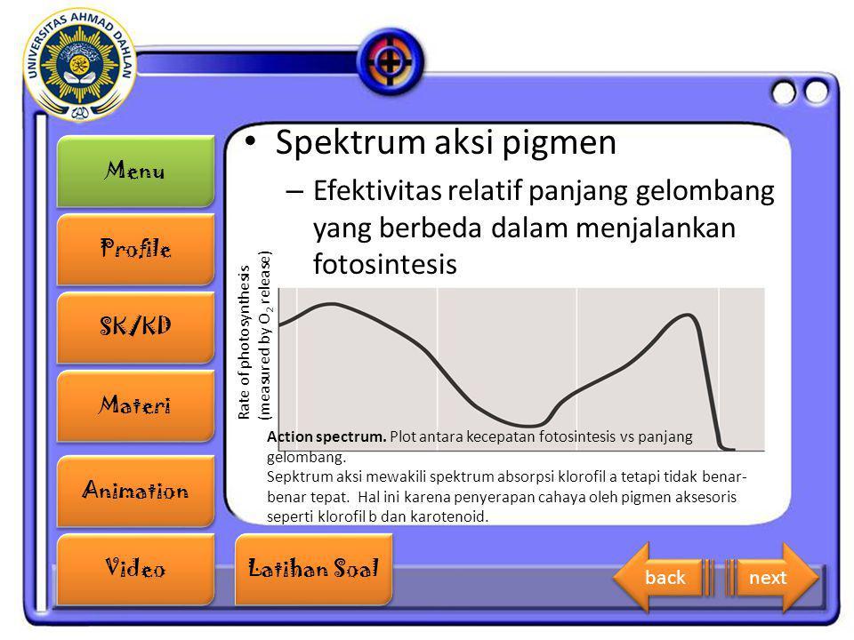 Spektrum aksi pigmen Efektivitas relatif panjang gelombang yang berbeda dalam menjalankan fotosintesis.