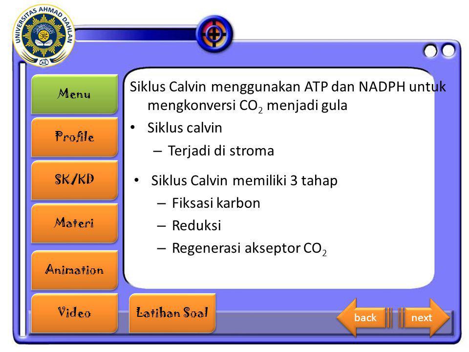 Siklus Calvin memiliki 3 tahap Fiksasi karbon Reduksi