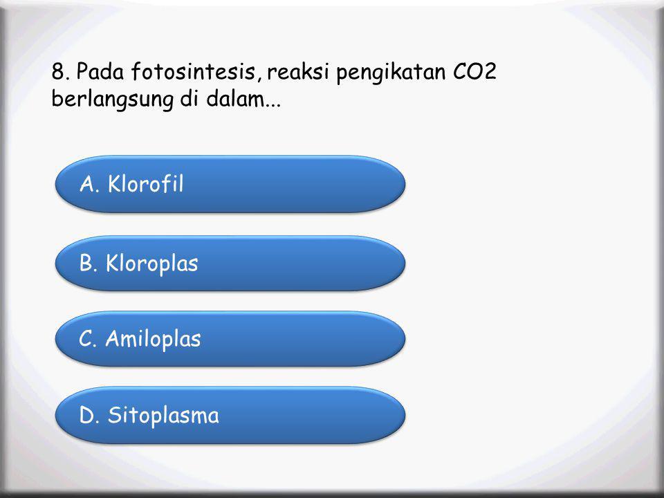 8. Pada fotosintesis, reaksi pengikatan CO2 berlangsung di dalam...