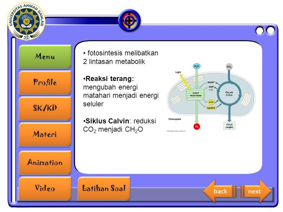 fotosintesis melibatkan 2 lintasan metabolik