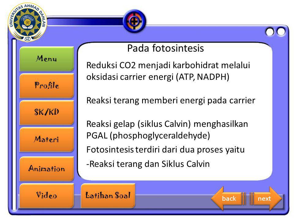 Importancia del atp en la fotosintesis 37