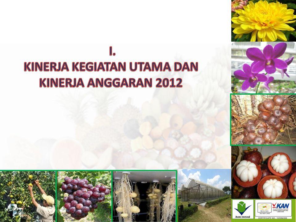 KINERJA KEGIATAN UTAMA DAN KINERJA ANGGARAN 2012