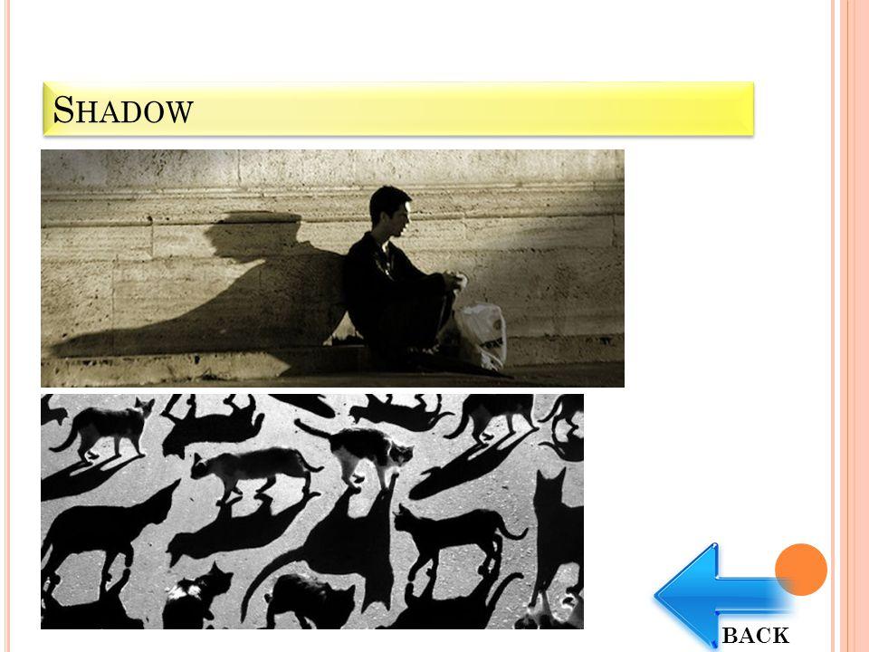 Shadow BACK