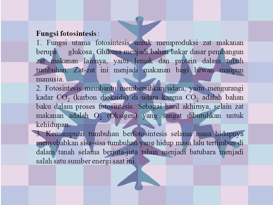 Fungsi fotosintesis :