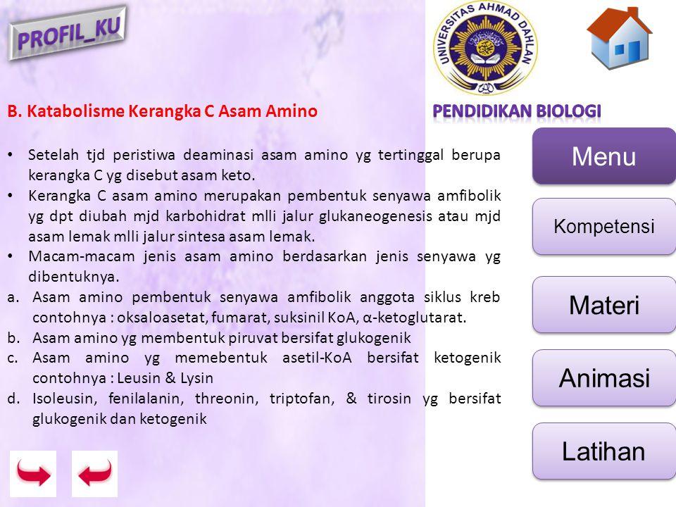B. Katabolisme Kerangka C Asam Amino