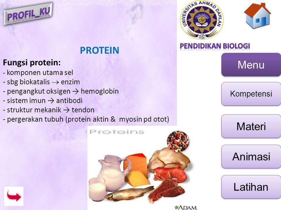 PROTEIN Fungsi protein: - sbg biokatalis  enzim
