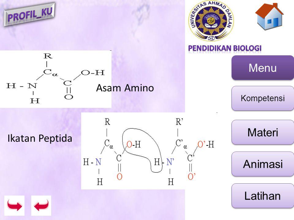 Asam Amino Ikatan Peptida