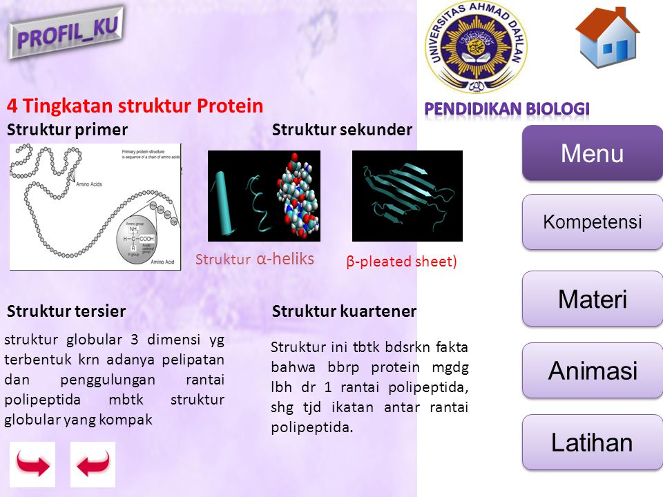 4 Tingkatan struktur Protein