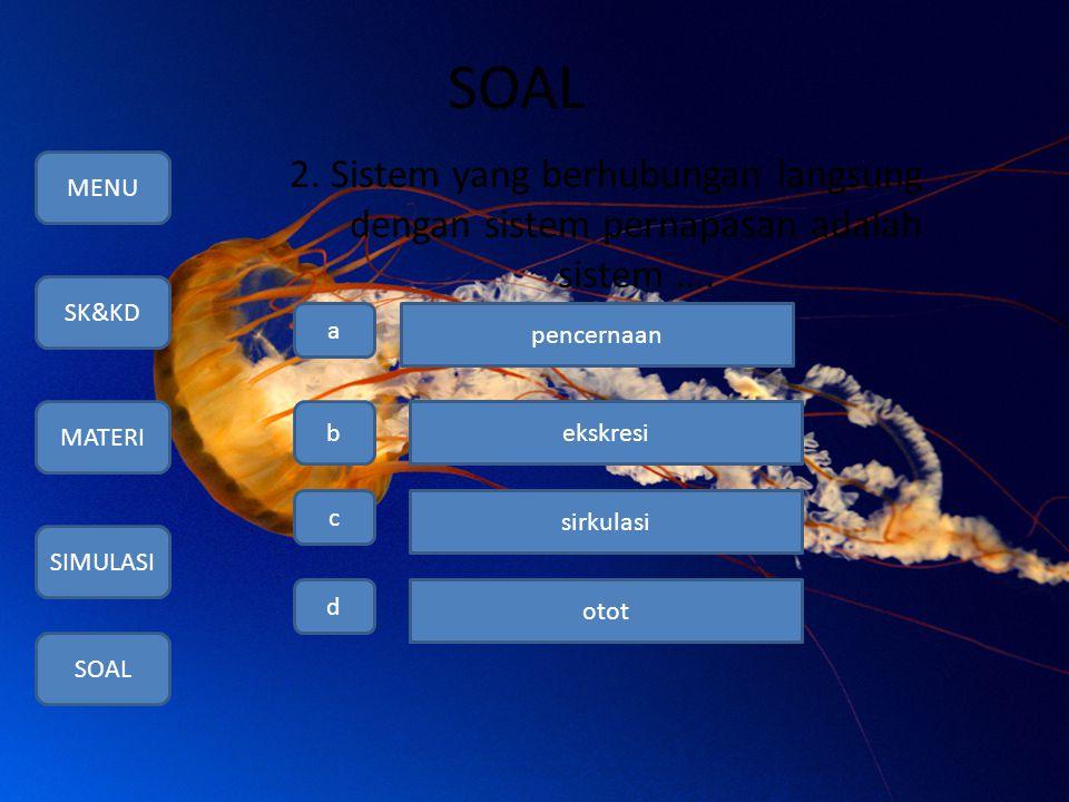 SOAL 2. Sistem yang berhubungan langsung dengan sistem pernapasan adalah sistem …. MENU. SK&KD. MATERI.